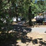 Foto di Parc Bellevue Camping