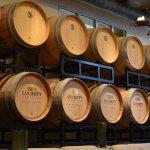 Gorgeous oak barrels