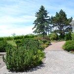 Grand Pre Winery, looking toward the vineyard
