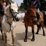 Before dismounting after a fantastic time