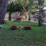 Photo de Giardino Apartments