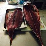 Tonno rosso , piatti del cavalluccio marino