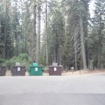 Photo of Crane Flat Campground