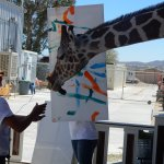 painting by giraffe and keeper