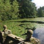 Altamont Gardens Foto
