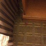 Foto di BEST WESTERN PLUS Ramkota Hotel