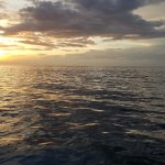 Sunset from the boat at the end of the trip. AMAZING!!!