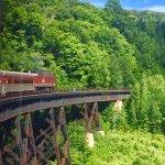 Foto de Agawa Canyon Tour Train