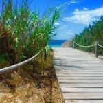 Gecko Beach Club Foto
