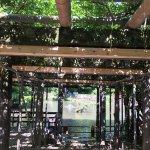 Hisaizu Shrine Foto