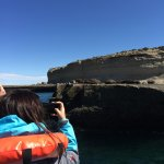 Puerto Piramides Whale Watching Tour Foto