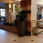Lobby Area at Hilton Garden Inn San Diego Del Mar
