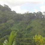 Foto di Casa Grande Mountain Retreat