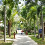 Foto de The Green Beach Resort