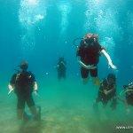 Photo de LEPIA Dive Centre