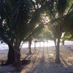 Photo de White Sands Beach Resort