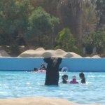 Photo de Sindbad Aqua Park
