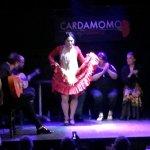 Photo de Cardamomo Tablao Flamenco