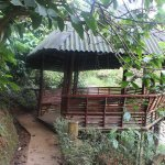 Foto de Vythiri Village