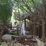 Foto de Xanadu Island Resort