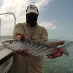 Bonefish caught wading (16th of the day)