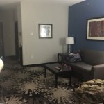 Comfort Suites Greenville Foto