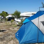 Camping ayant zones boisees