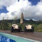 棕櫚木飯店照片