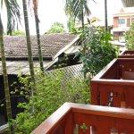 Vue sur les balcons voisins