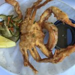 Tempura soft shell crab - just fantastic!
