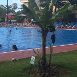 Photo de Puerto Resort by Blue Sea