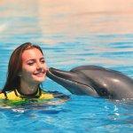 Foto di Dolphin Bay