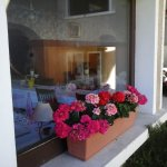Un restaurant fleuri et accueillant