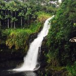 The Inn at Kulaniapia Falls Foto