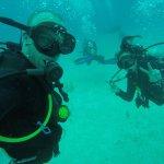 Foto de Diversity Diving