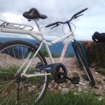 Mountain Bike maintained by Harprit