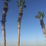 Sheraton Jeddah Hotel Foto