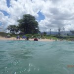 Awesome snorkeling!!