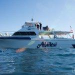 The Boat - Aliikai