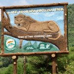 Full-Day Lake Manyara National Park Tour Foto