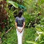 Rainforest Retreat Eco-lodge Foto