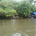 Photo de Our Land Island Backwater Resort