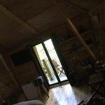 Photo of le bois dormant