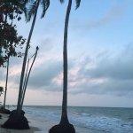 Foto de Coqueiros Beach