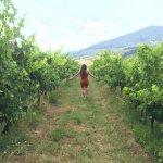 Tuscan Trails Foto