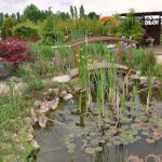 un camping aux magnifiques décorations florales et arbustives