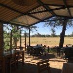 Afrika Farm Ondekaremba Foto