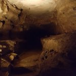 Forestville/Mystery Cave State Park Foto
