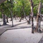 Nilaveli Beach Hotel Foto