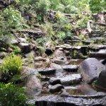 Photo de Bura Resort